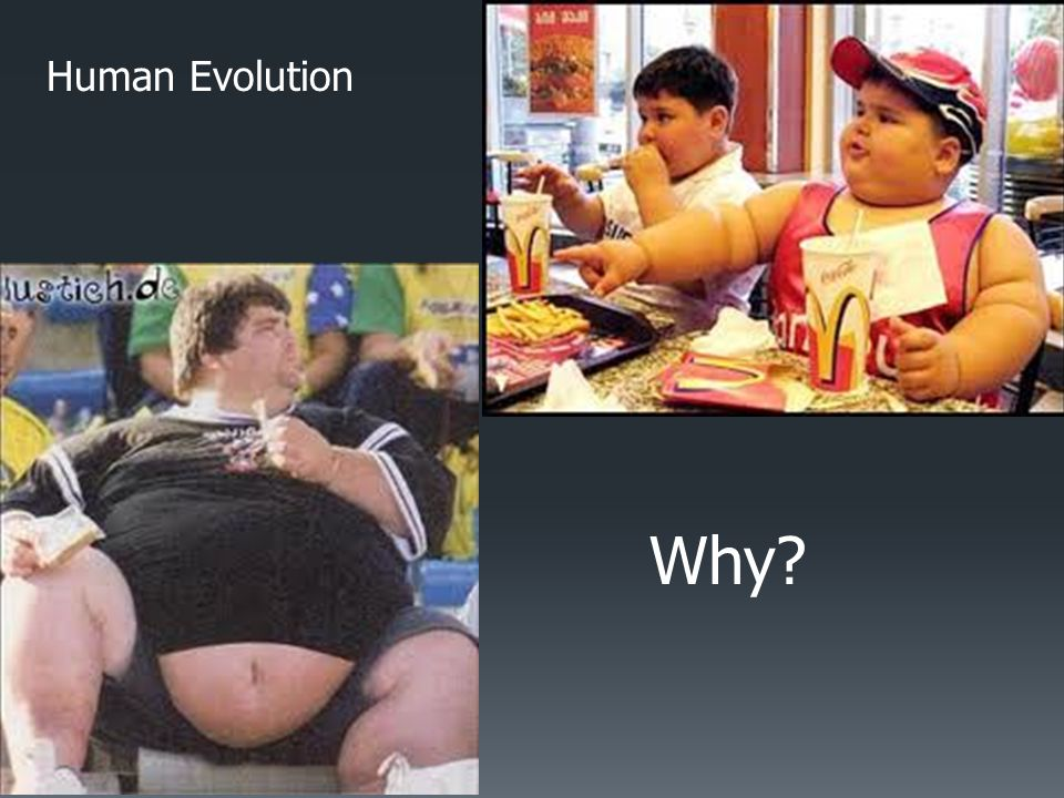 Human Evolution Why