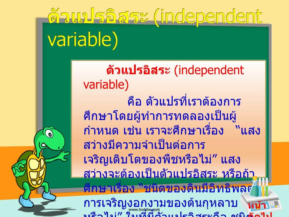 ตัวแปรอิสระ (independent variable)