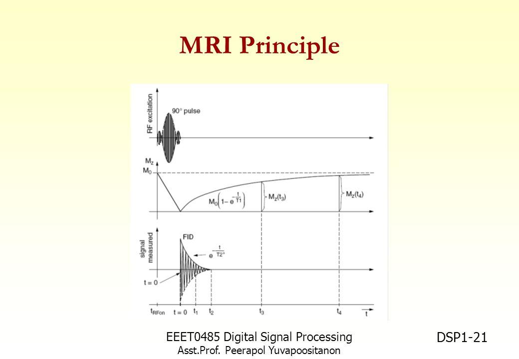 MRI Principle EEET0485 Digital Signal Processing