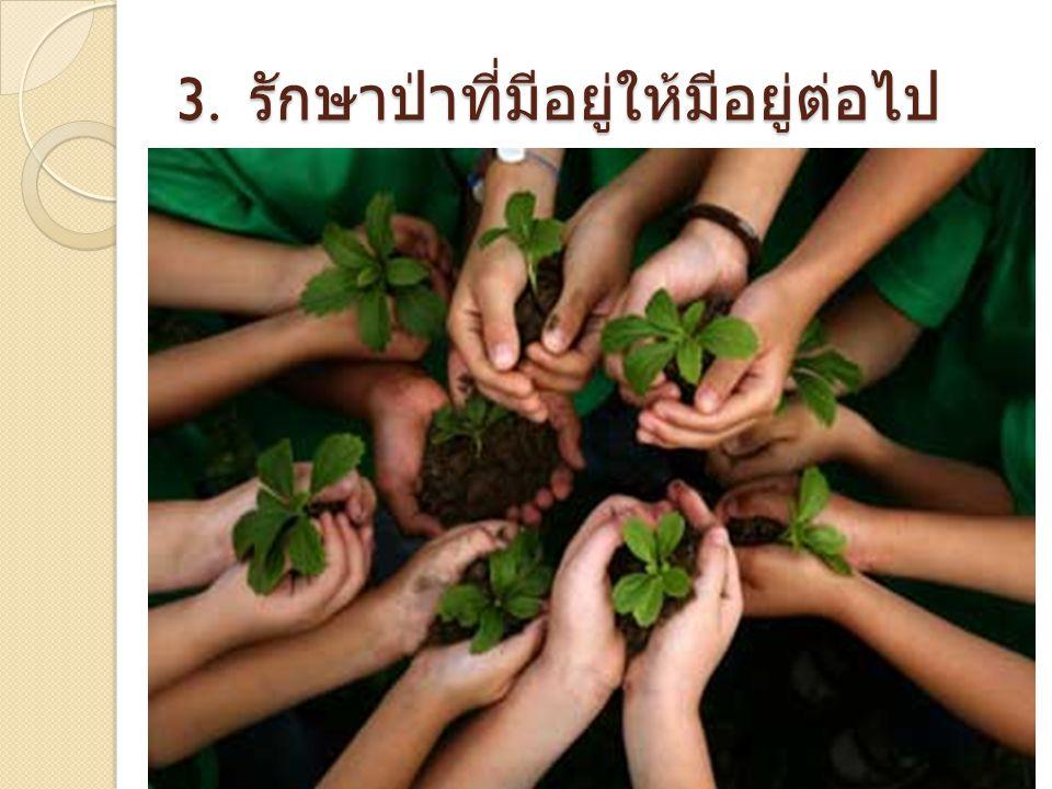3. รักษาป่าที่มีอยู่ให้มีอยู่ต่อไป