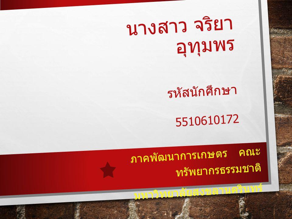 นางสาว จริยา อุทุมพร รหัสนักศึกษา 5510610172