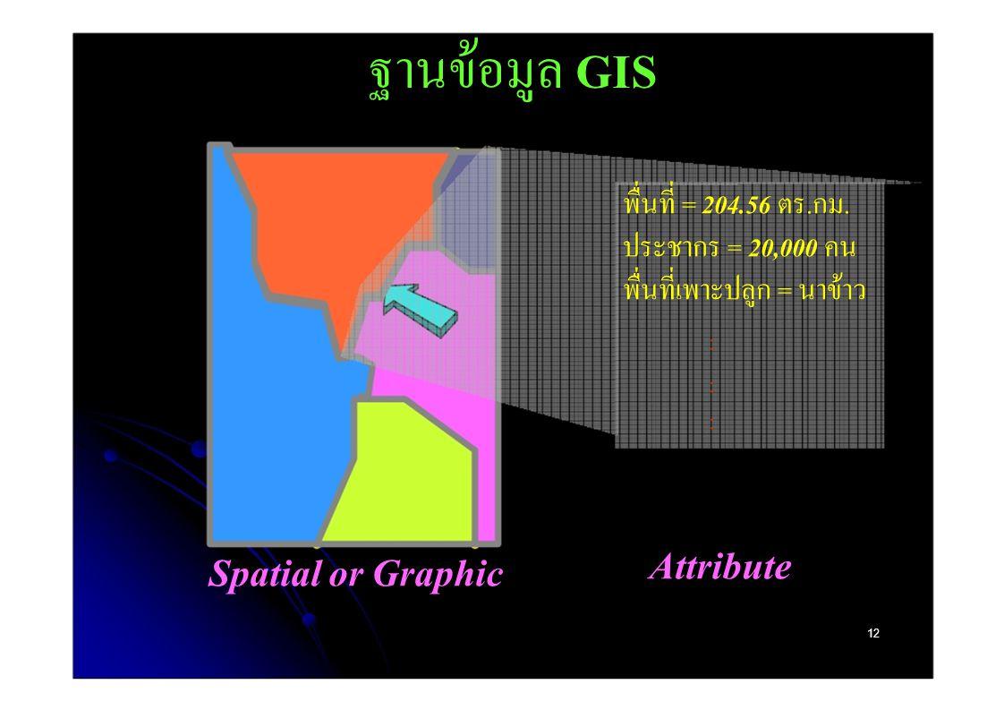 ฐานข้อมูล GIS พื่นที่ = 204.56 ตร.กม. ประชากร = 20,000 คน พื่นที่เพาะปลูก = นาข้าว. : : : Attribute.