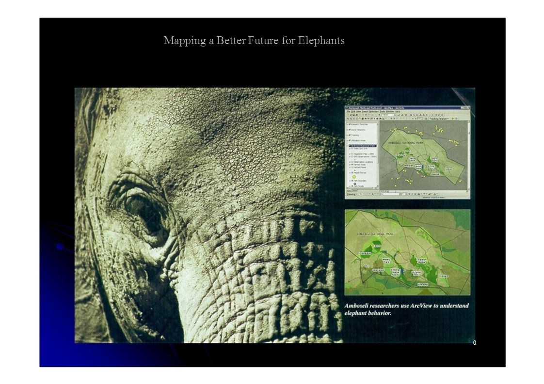 Mapping a Better Future for Elephants