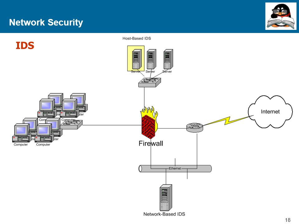 Network Security IDS