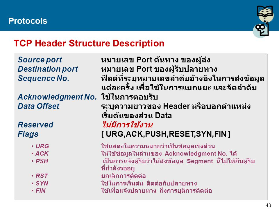 TCP Header Structure Description