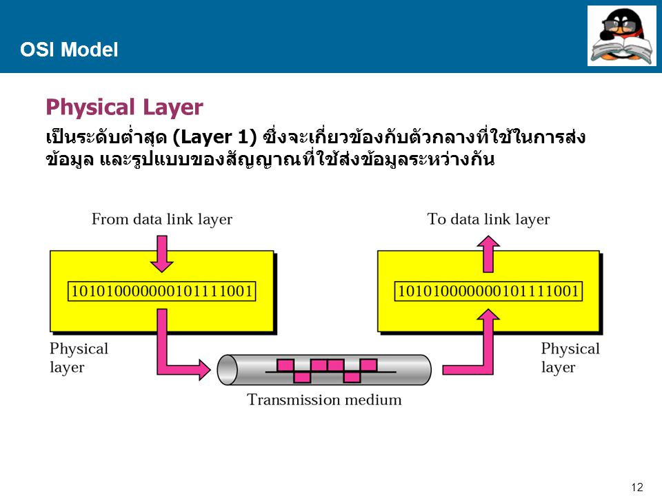 Physical Layer OSI Model