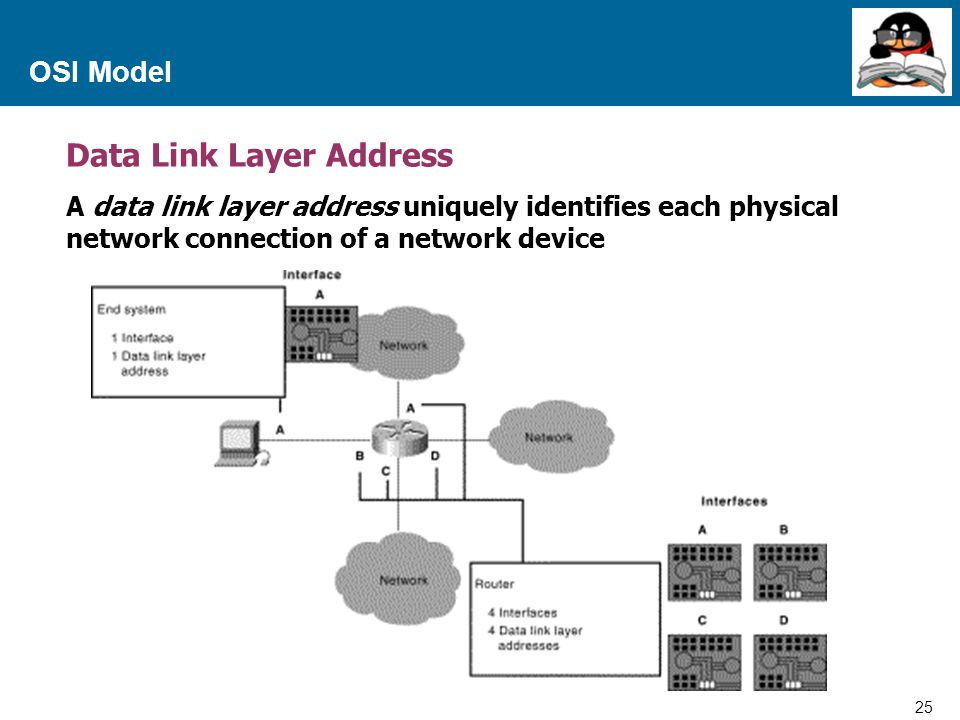Data Link Layer Address
