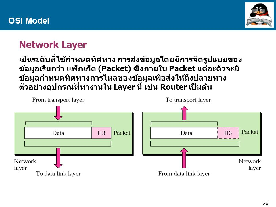 Network Layer OSI Model