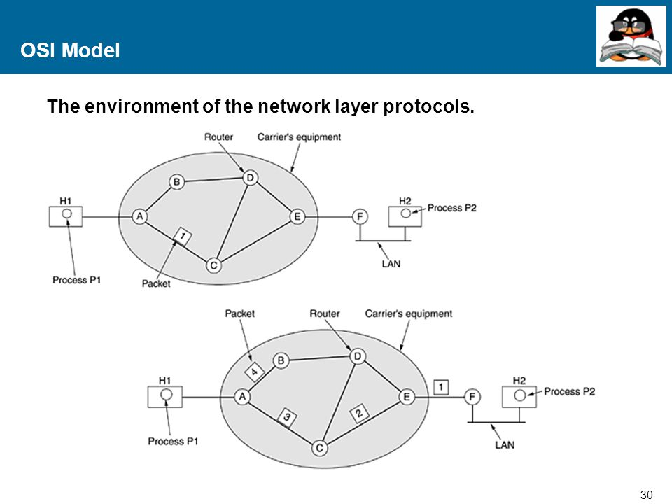 OSI Model The environment of the network layer protocols.