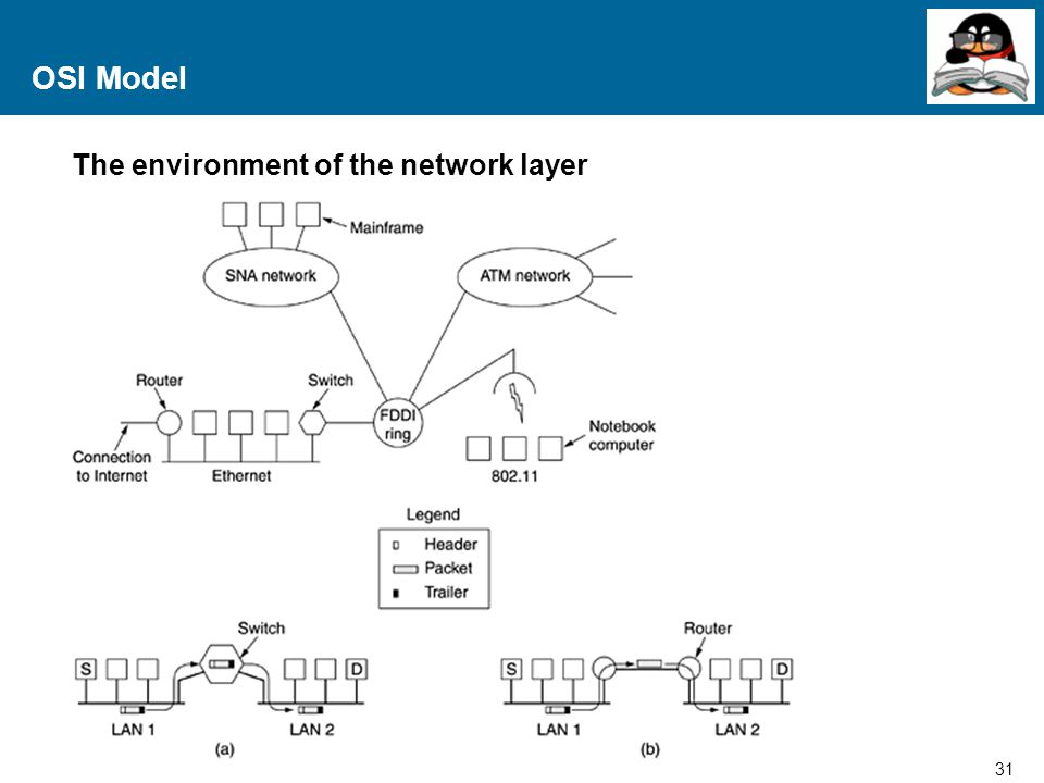 OSI Model The environment of the network layer