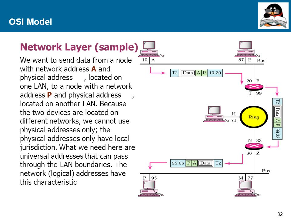 Network Layer (sample)