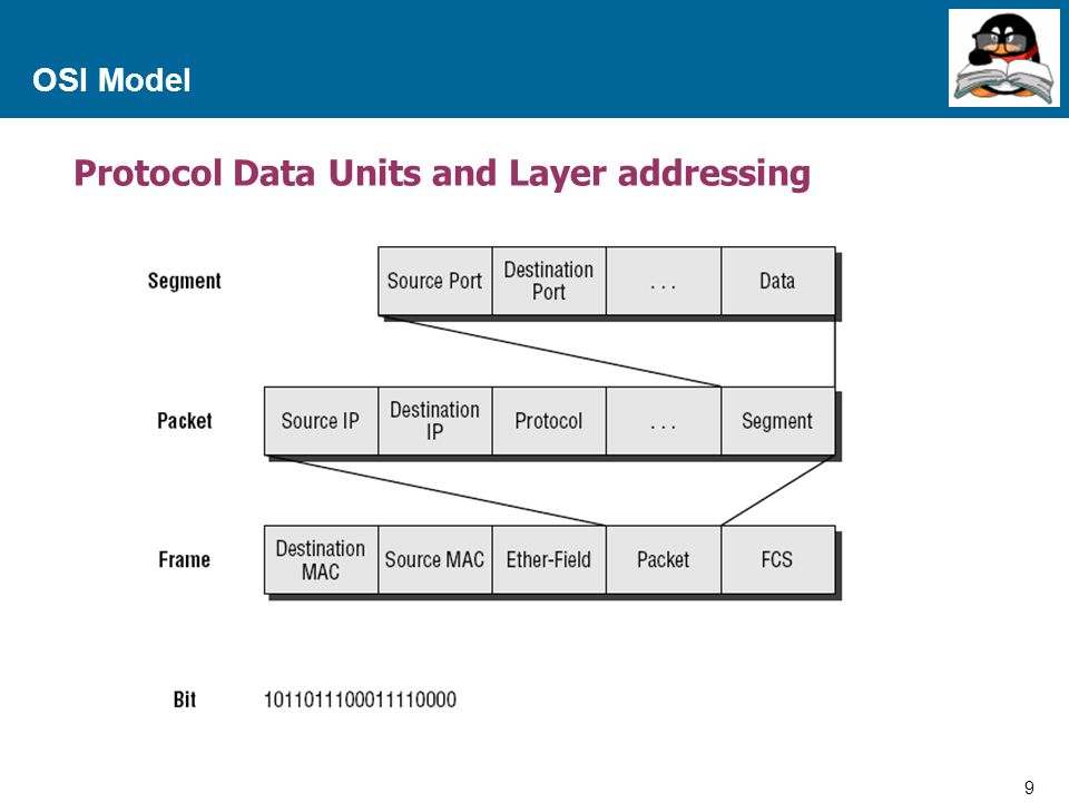 Protocol Data Units and Layer addressing