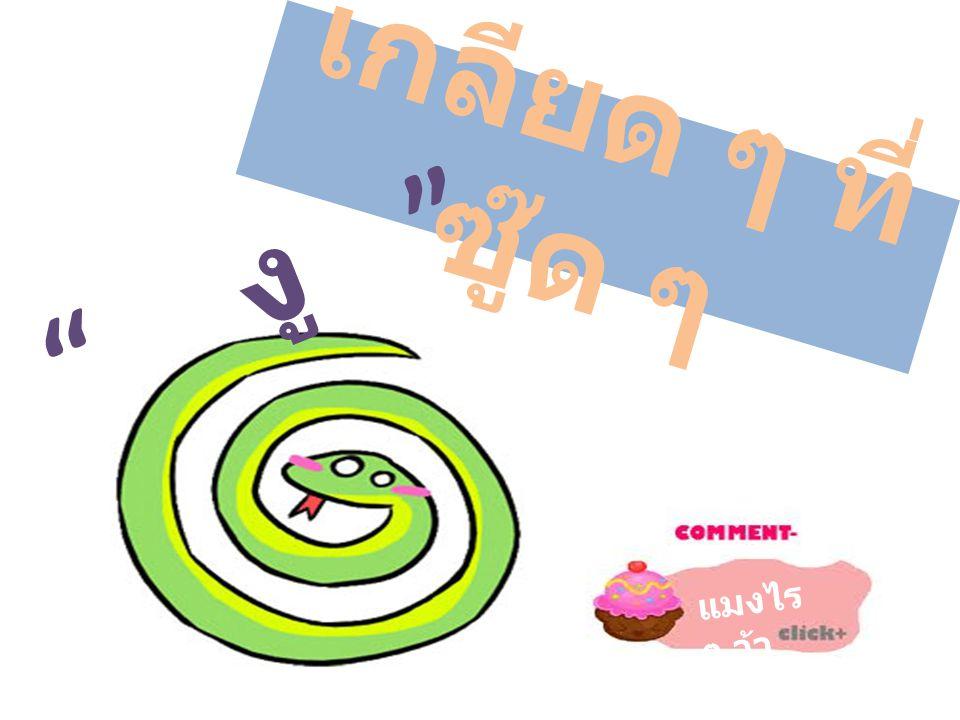 เกลียด ๆ ที่ซู๊ด ๆ งู แมงไร ๆ ว้า