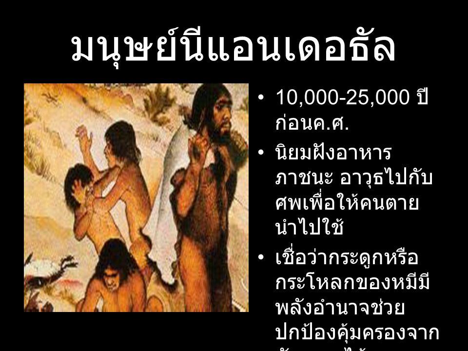 มนุษย์นีแอนเดอธัล 10,000-25,000 ปีก่อนค.ศ.