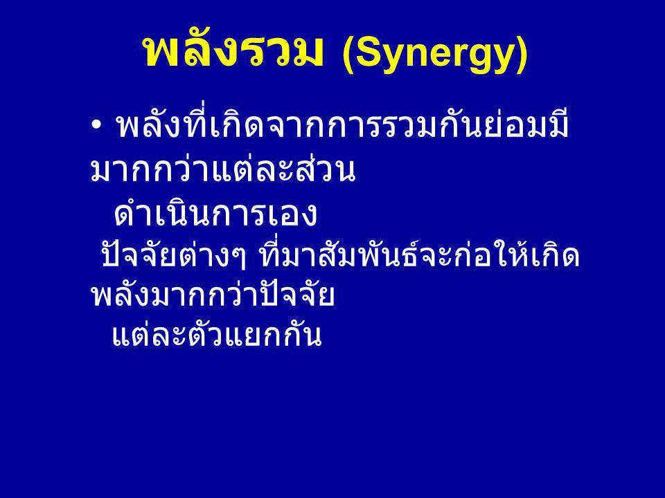 พลังรวม (Synergy)