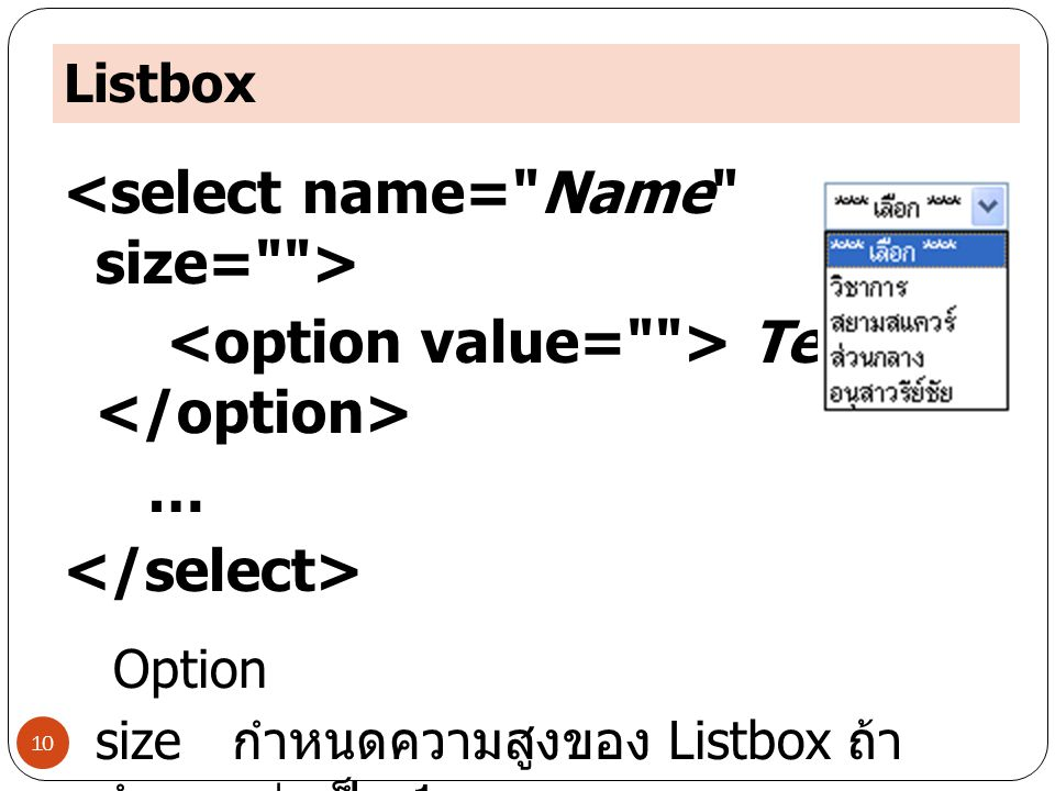 <select name= Name size= >