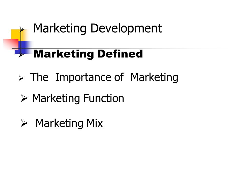Marketing Function Marketing Mix Marketing Development