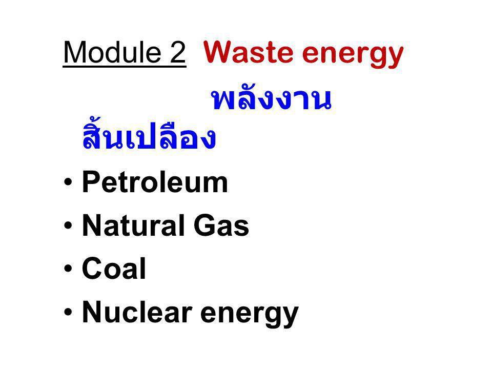 Module 2 Waste energy พลังงานสิ้นเปลือง Petroleum Natural Gas Coal Nuclear energy
