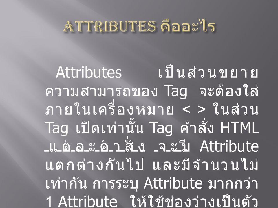 Attributes คืออะไร