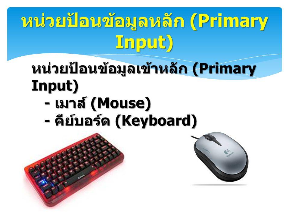 หน่วยป้อนข้อมูลหลัก (Primary Input)