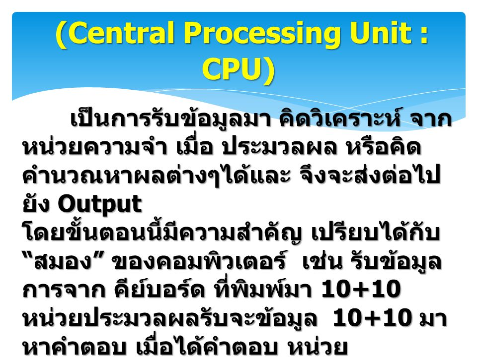 (Central Processing Unit : CPU)