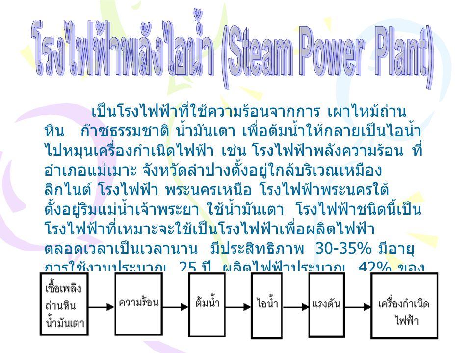 โรงไฟฟ้าพลังไอน้ำ (Steam Power Plant)