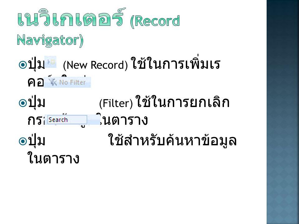การทำงานกับเรคอร์ดเนวิเกเตอร์ (Record Navigator)