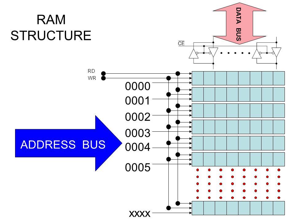 RAM STRUCTURE 0000 0001 0002 0003 ADDRESS BUS 0004 0005 xxxx DATA BUS