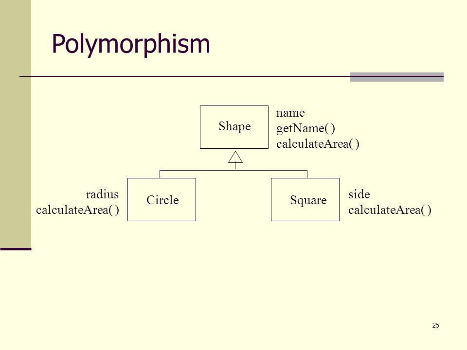 Polymorphism Shape Square Circle name getName( ) calculateArea( ) side