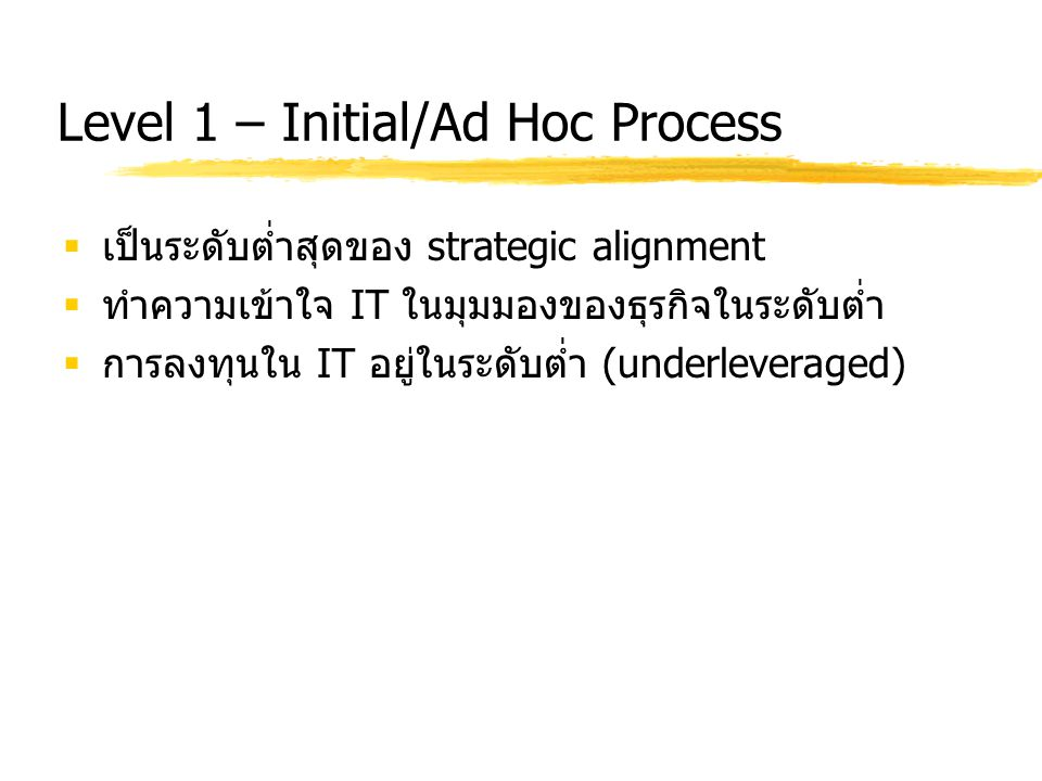 Level 1 – Initial/Ad Hoc Process