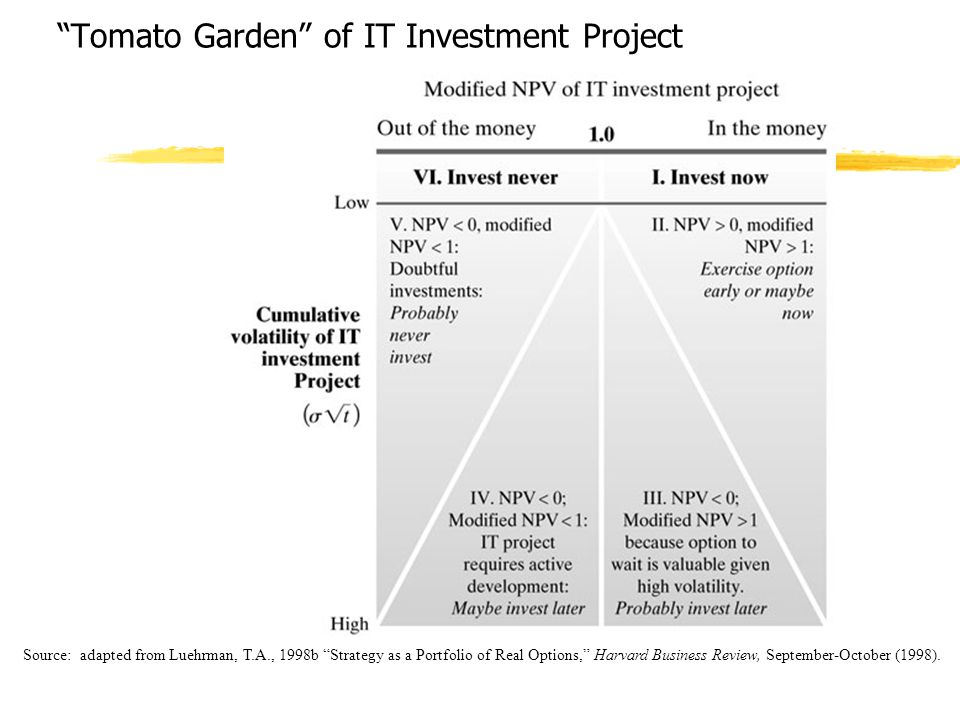 Tomato Garden of IT Investment Project