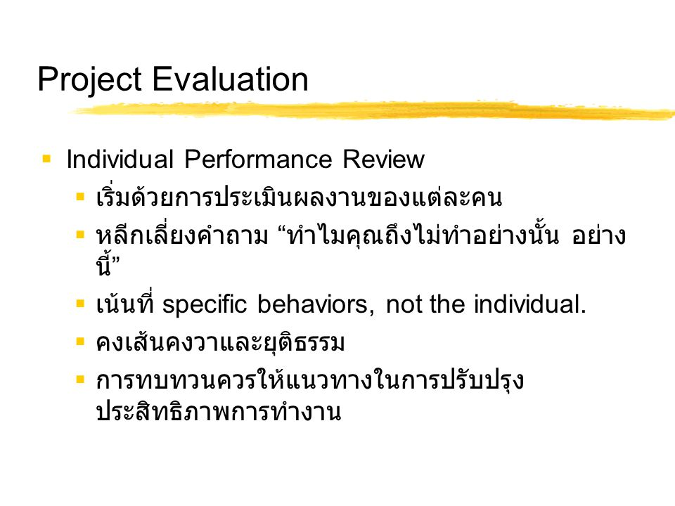Project Evaluation Individual Performance Review