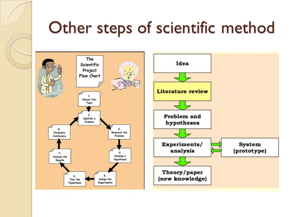 Other steps of scientific method
