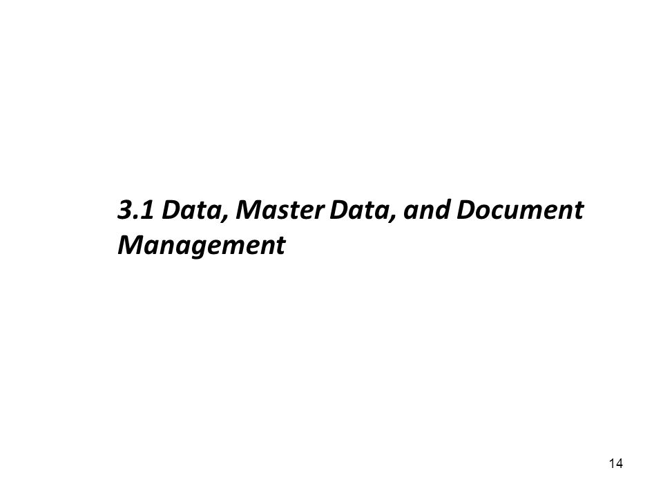 3.1 Data, Master Data, and Document Management