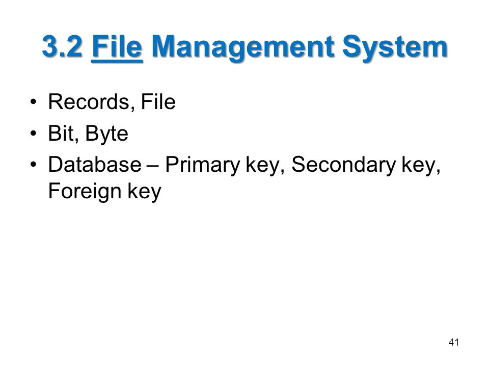 3.2 File Management System