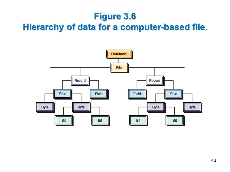 Figure 3.6 Hierarchy of data for a computer-based file.