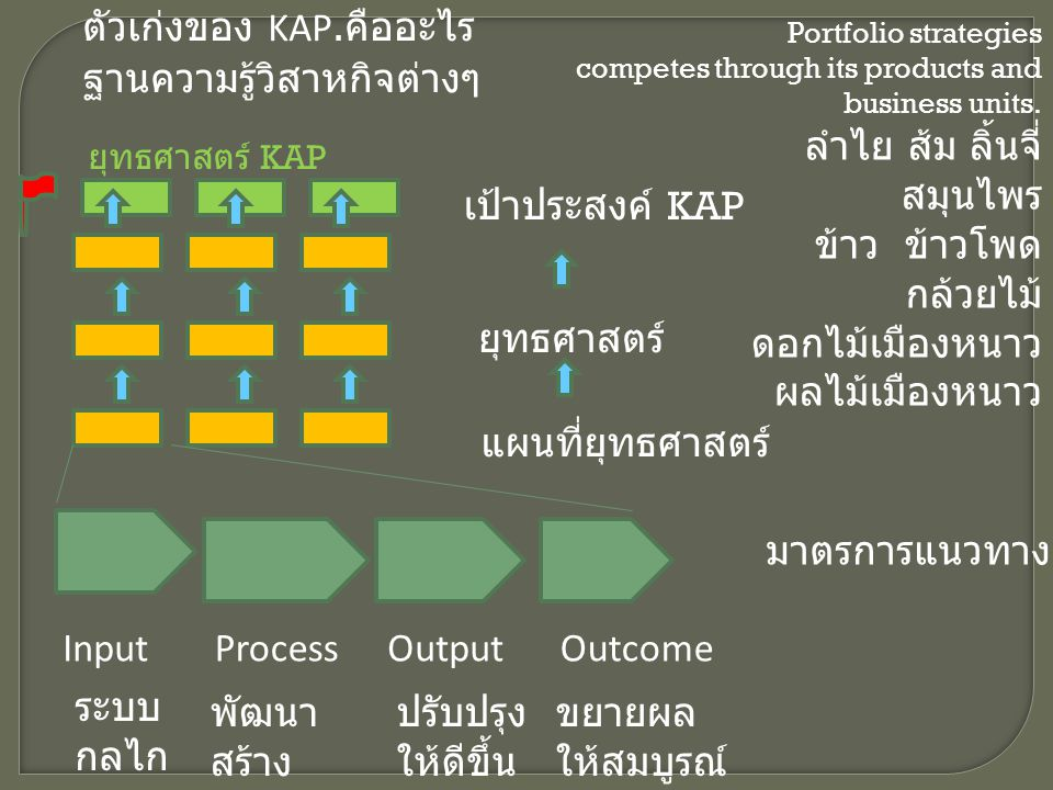ตัวเก่งของ KAP.คืออะไร ฐานความรู้วิสาหกิจต่างๆ ลำไย ส้ม ลิ้นจี่