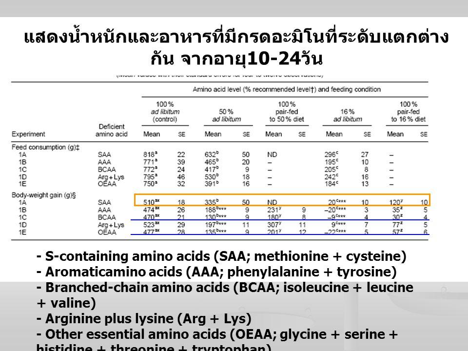 แสดงน้ำหนักและอาหารที่มีกรดอะมิโนที่ระดับแตกต่างกัน จากอายุ10-24วัน