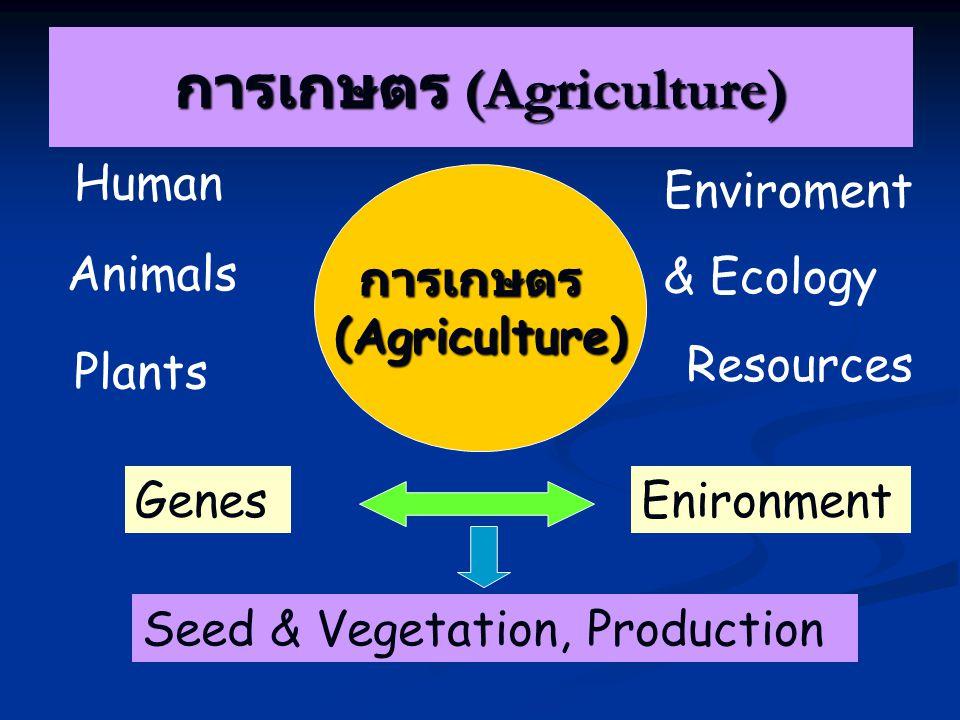 การเกษตร (Agriculture)