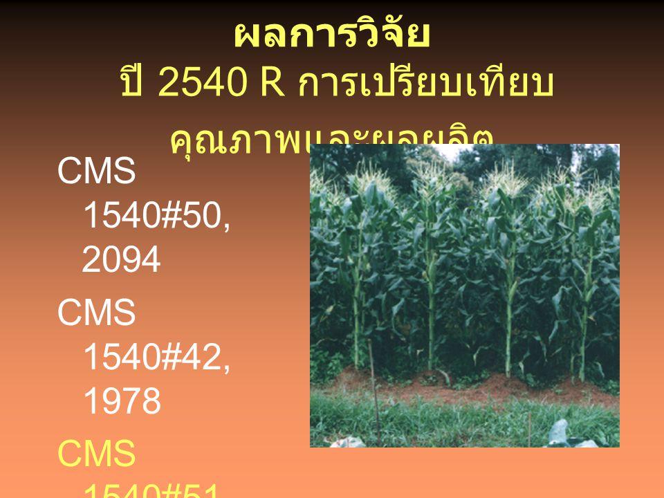 ผลการวิจัย ปี 2540 R การเปรียบเทียบคุณภาพและผลผลิต