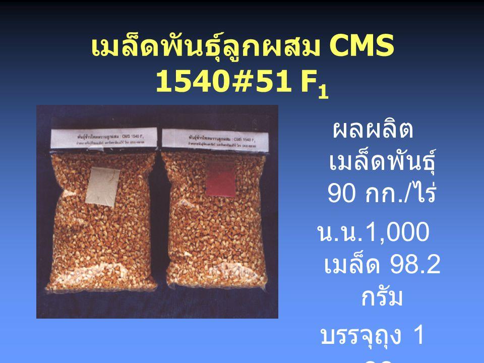 เมล็ดพันธุ์ลูกผสม CMS 1540#51 F1