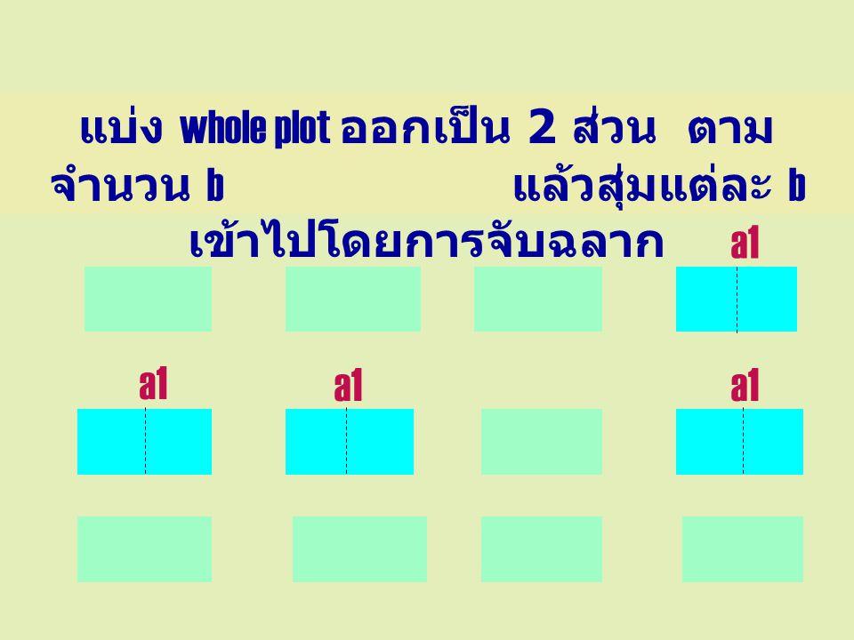 แบ่ง whole plot ออกเป็น 2 ส่วน ตามจำนวน b แล้วสุ่มแต่ละ b เข้าไปโดยการจับฉลาก