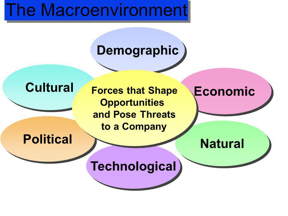 The Macroenvironment Demographic Cultural Economic Political Natural