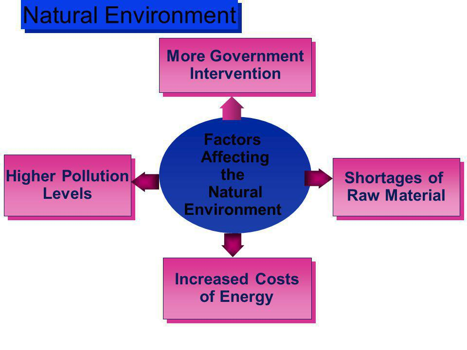 Natural Environment More Government Intervention Factors Affecting the