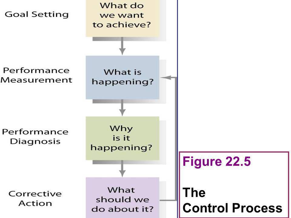 Figure 22.5 The Control Process