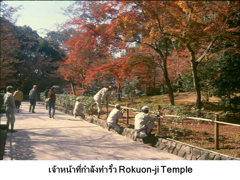 เจ้าหน้าที่กำลังทำรั้ว Rokuon-ji Temple