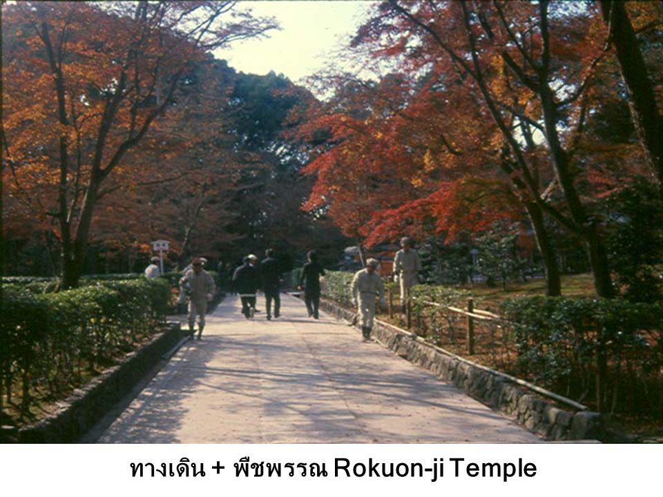 ทางเดิน + พืชพรรณ Rokuon-ji Temple