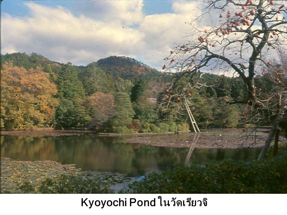 Kyoyochi Pond ในวัดเรียวจิ