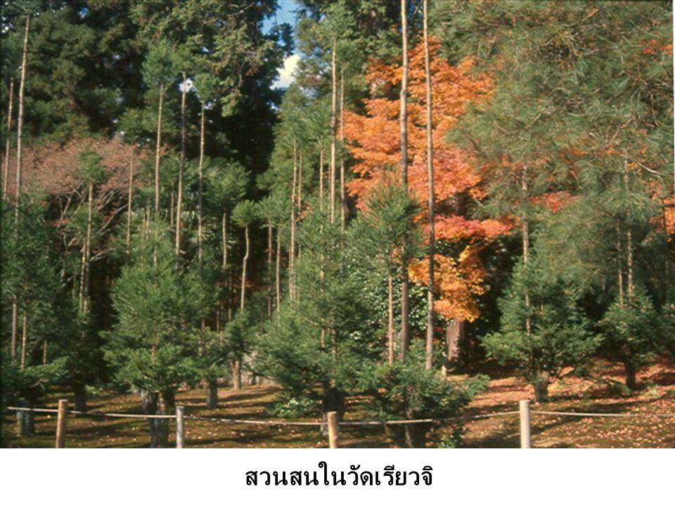 สวนสนในวัดเรียวจิ