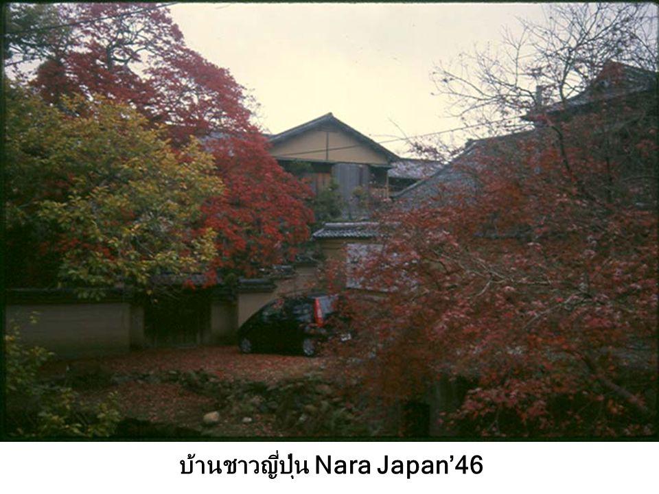 บ้านชาวญี่ปุ่น Nara Japan'46